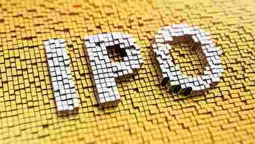 蕨类植物在2020年佩戴IPO以资助扩张