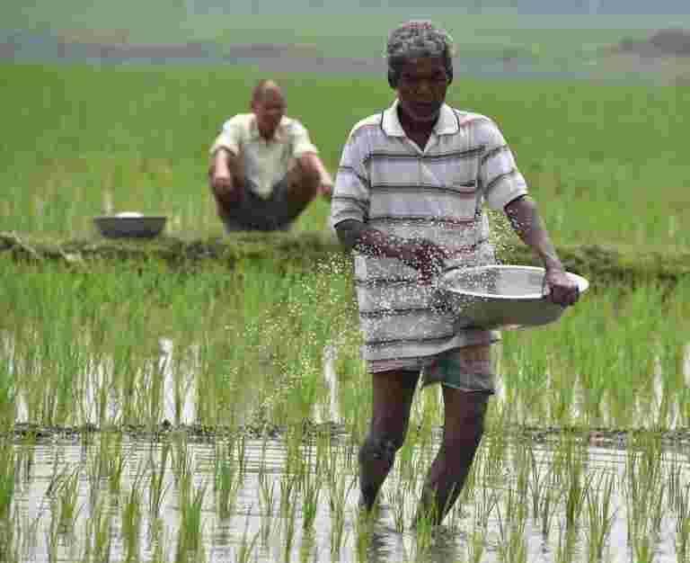政府保险计划下的债券为约27万卢克农民