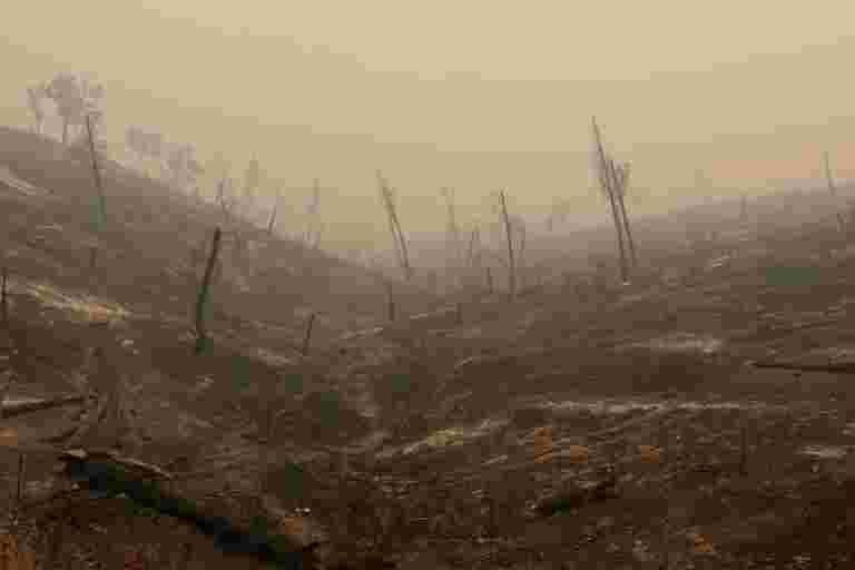 至少56人死亡,加州野火超过100次失踪